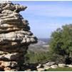 הר מירון שביל הפסגה