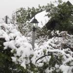 חופשה בטבע, אטרקציה בשלג
