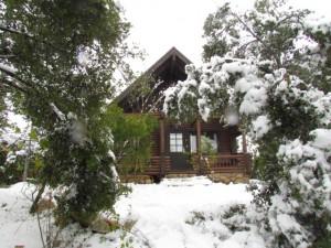 שלג - דצמבר 2013